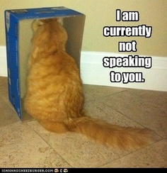 not speaking to you