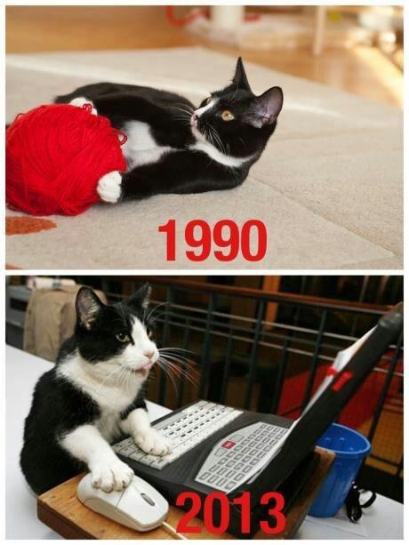 2013 kitty 10 18 13