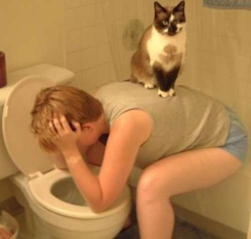 cat on woman in bathroom 10 17 13