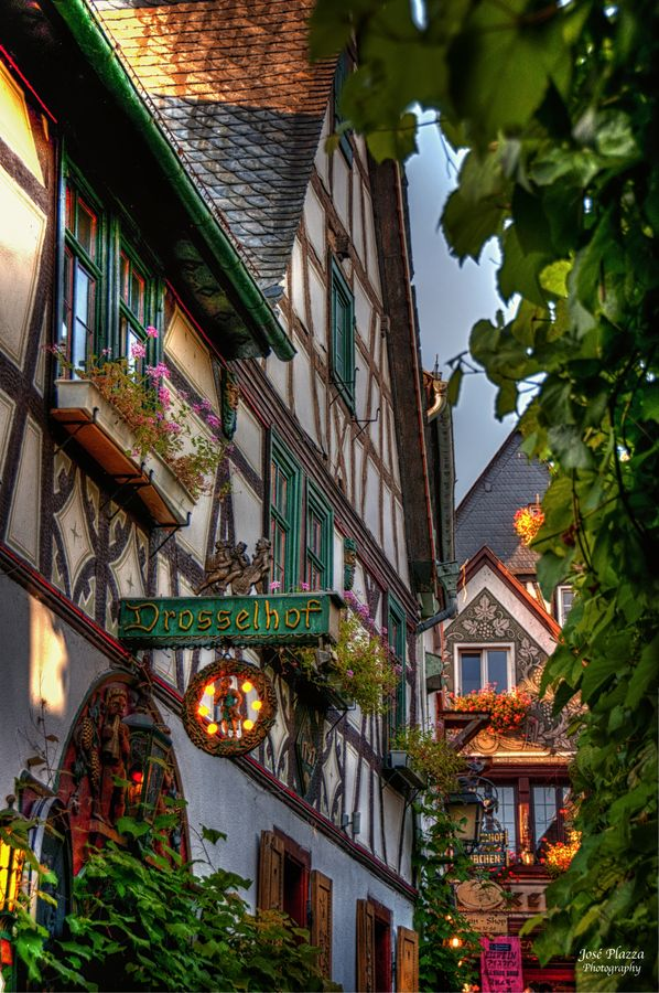 Rudesheim, Germany 11 3 13